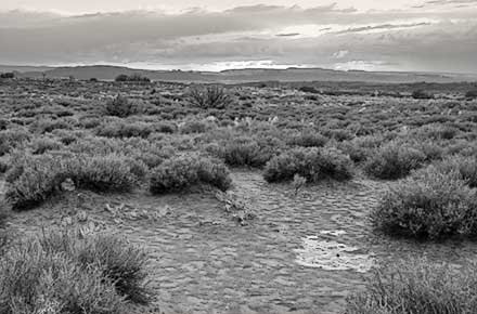 Black and White small water puddle La Sal Mountains in background