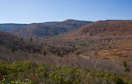 Graveyard fields in late fall no leaves