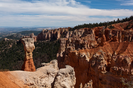 Color photo of Bryce Canyon showing red erosion features