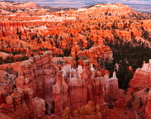 Sunset at Bryce Canyon red spires