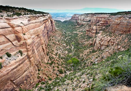 Small dry canyon in Colorado National Monument