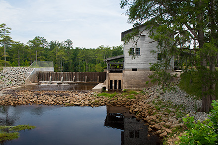 Dam and Gristmill at Brock's Millpond Trenton, NC