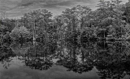 Black and White photo of Brock's Millpond
