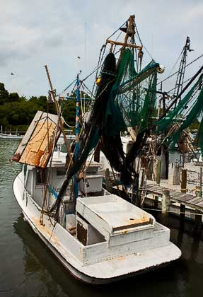 Fishing boats in Marshallberg Harbor