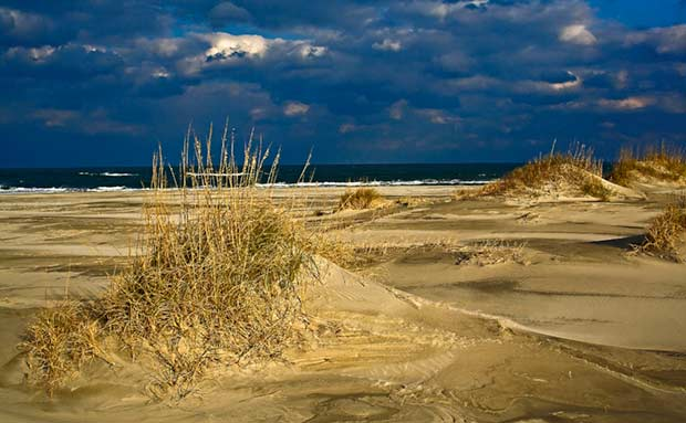 Beach dunes at Pea Island, NC