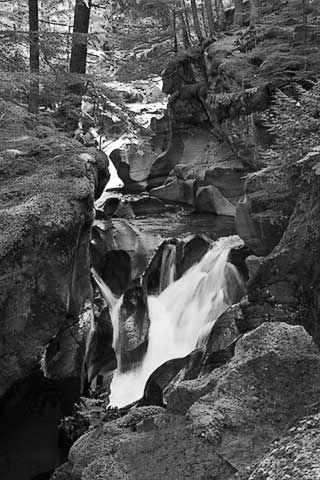 Black and White photo of Avalanche Gorge