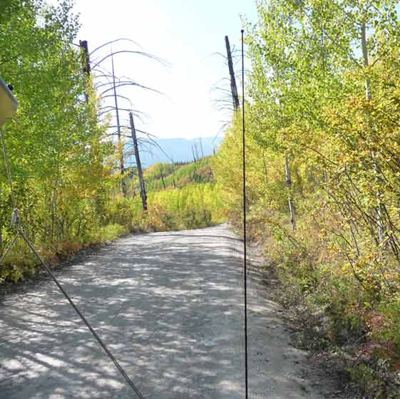 Road to Bowan Lake inside the park