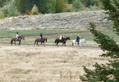 Horse riders headed to the ranch.