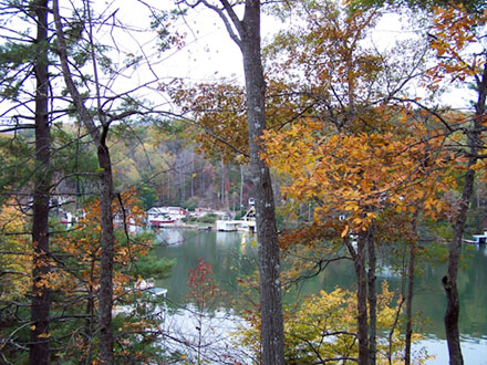 Fall  colors at Lake Lure NC