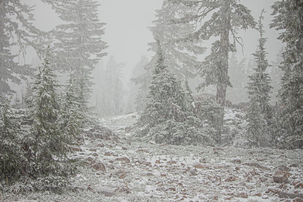 Fog and snow in Lassen National Park