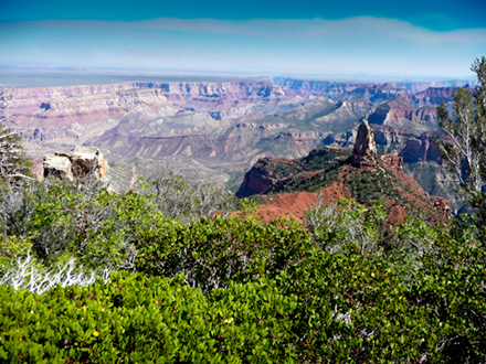 View of North Rim of the Grand Canyon