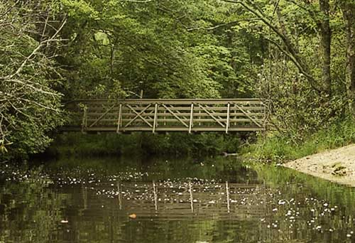 Bridge on Julian Price Lake