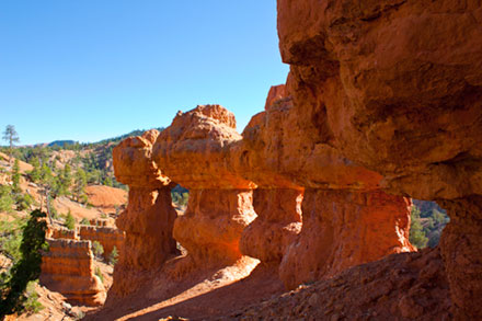 Arches in Red Canyon