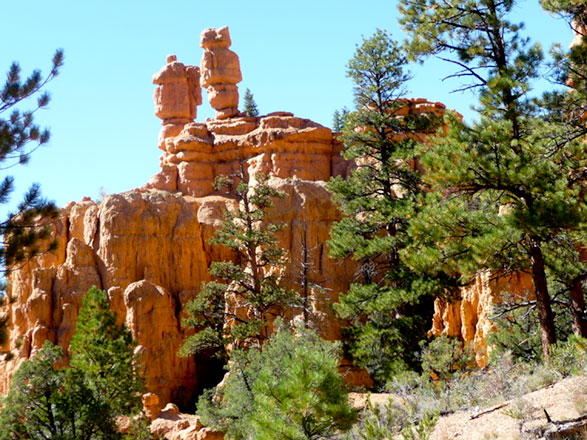 Hoodoos in Red Canyon