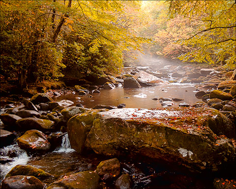 Fall colors and stream in Great Smoky Mountains National Park
