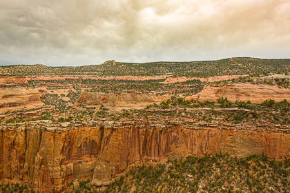Red cliff in Colorado National Momument