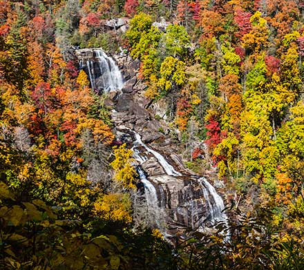 Whitewater Falls with Fall Colors