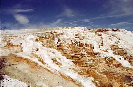 Mammoth Hot Springs 1999