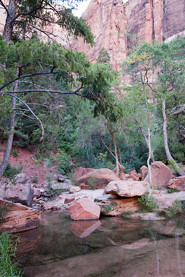 Middle Emerald Pool with red cliffs in background